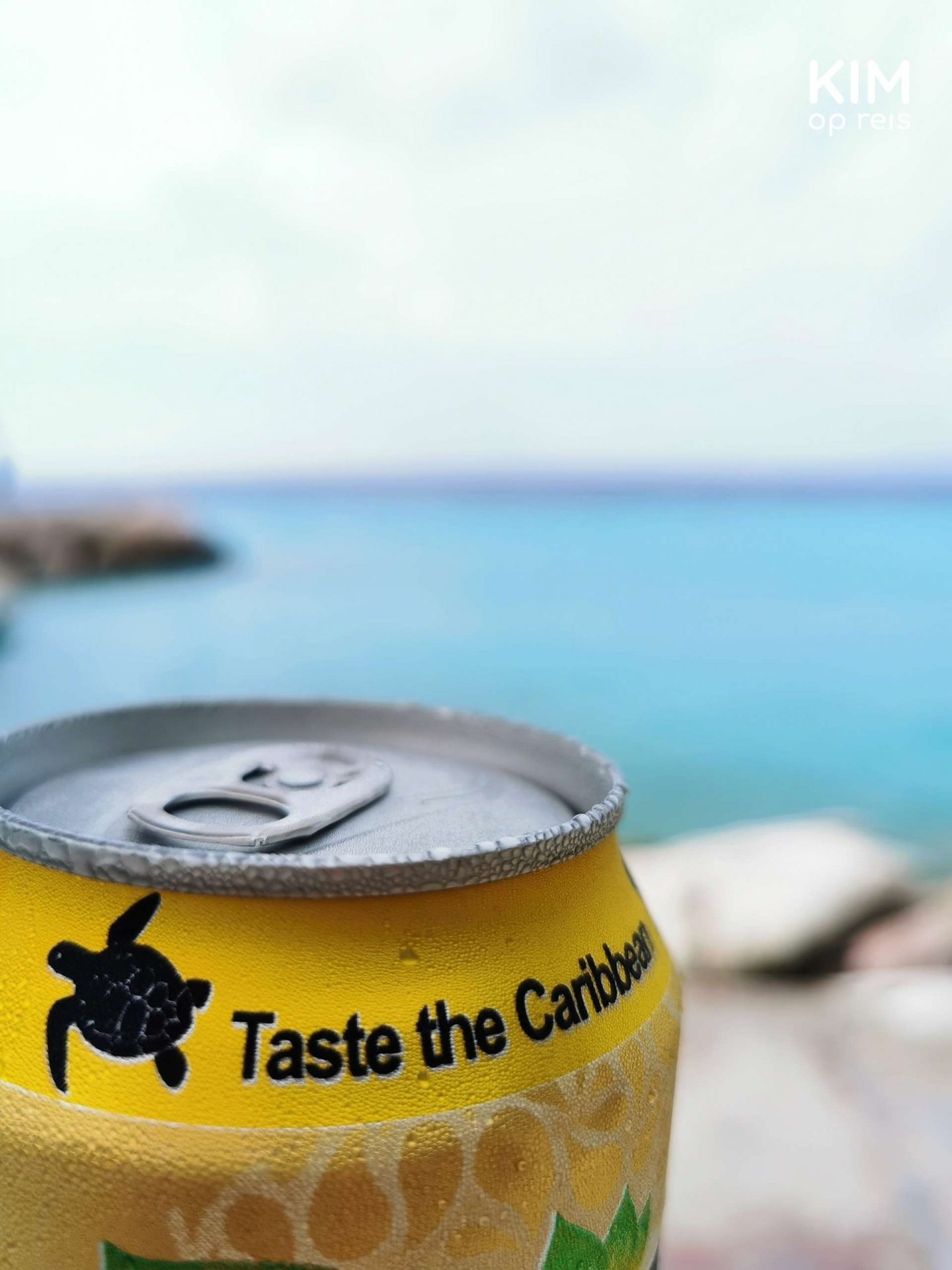 Restaurants Curacao Taste the Caribbean: top of a can of iced tea that reads 'Taste the Caribbean', a background of blue sea