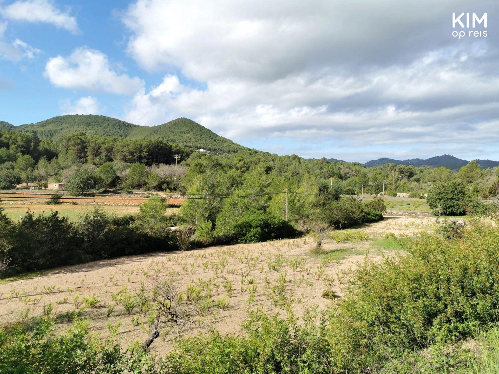 Hiking Ibiza - view over the countryside of Ibiza with lots of greenery
