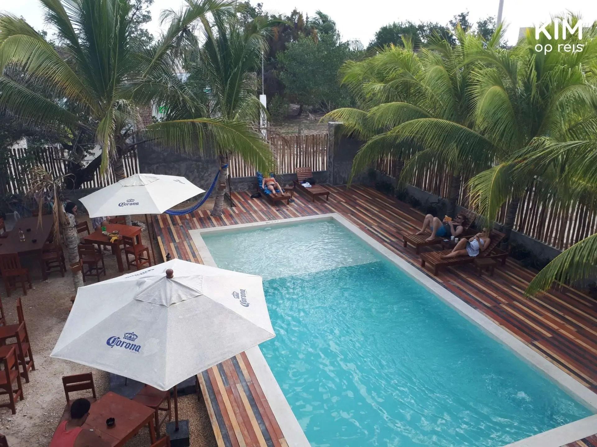 Isla Holbox Che Hostel zwembad: openluchtzwembad met parasols en palmbomen
