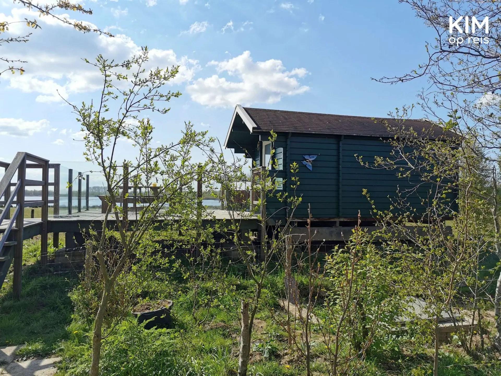 Trekkershut De Zeearend Biesboschvakantie: groene houten trekkershut met terras tussen opkomende boompjes