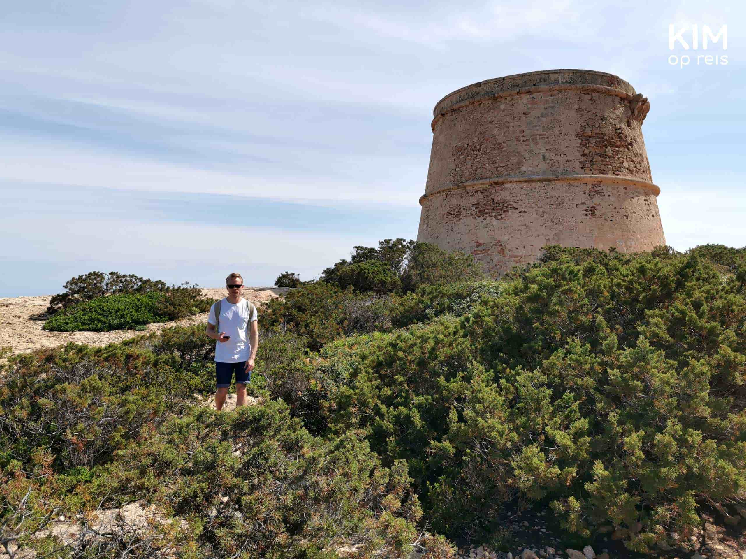 Torre d'en Rovira Ibiza overgrown: a man stands between the bushes, in the background the round tower