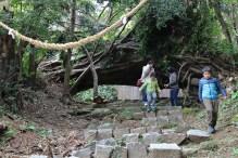 昨年夏の台風で倒れてしまった大木