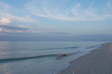 Ocean, Serene