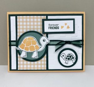 Recap of my Facebook Live from Thursday, May 27 – Turtle and Friends – POSTED A LITTLE LATE!