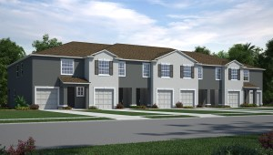 Eagle Palm Riverview Florida New Town Homes Community