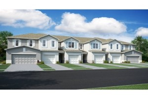 Free Service for Home Buyers    Riverview Lakes Townhomes  American Dream Series Homes   Riverview Florida Real Estate   Riverview Realtor   New Town Homes for Sale