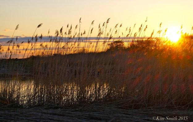 Loblolly Cove Rockport Massachusetts ©Kim Smith 2015