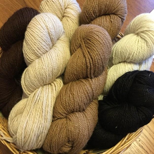 Alpaca yarn Marshalls -3 copyright Kim Smith