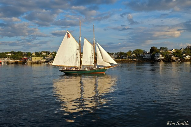 Schooner Thomas Lannon Gloucester MA copyright Kim Smith