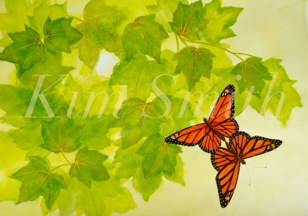 Monarchs Mating Ascending to Maple Tree Pages 22-23 Illustration Kim Smith copyright Kim Smith copy