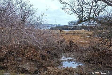gloucester-massachusetts-eastern-point-coastal-flooding-copyright-kim-smith