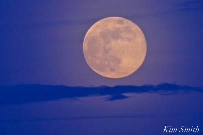 Full Flower Moon May Gloucester Massachusetts -7 copyright Kim Smith