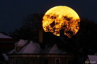 Blue Moon Halloween October 31, 2020 Gloucester copyright Kim Smith - 6 of 8