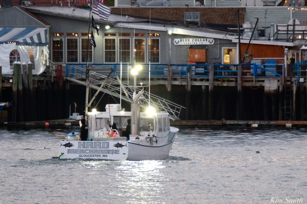 Wicked Tuna a Hard Merchandise Filming Gloucester Harbor copyright Kim Smith - 7 of 9