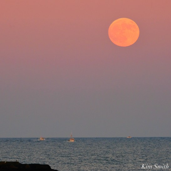 Full Beaver Moon Frost Moon Gloucester copyright Kim Smith - 13 of 18