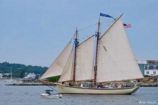 Schooner Parade of Sail American Eagle Gloucester 2021 copyright kim Smith - 14 of 52