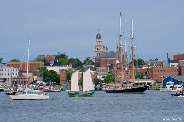 Schooner Parade of Sail Columbia Lewis H. Story Gloucester 2021 copyright kim Smith - 6 of 6