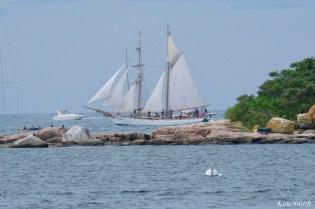 Schooner Parade of Sail Fritha Gloucester 2021 copyright kim Smith - 40 of 52