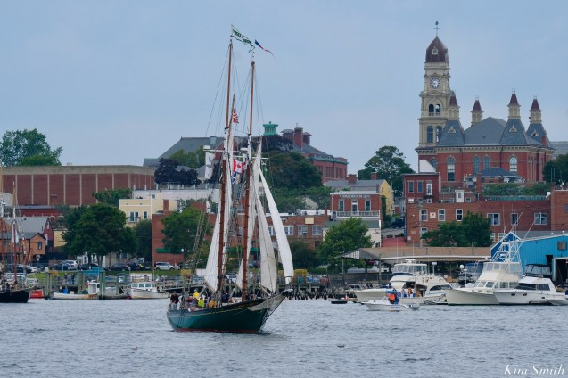 Schooner Parade of Sail Gloucester Thomas E. Lannon 2021 copyright kim Smith - 3 of 52