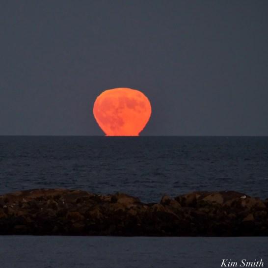 Hunter's Full Moon October Essex County copyright Kim Smith - 1 of 3