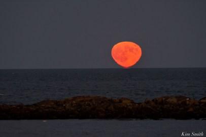 Hunter's Full Moon October Essex County copyright Kim Smith - 2 of 3