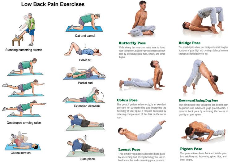 Low Back Pain Exercises 요통, 허리통증에 좋은 스트레칭 방법 5가지