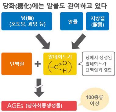 당화 알콜 노화의 원인 당화(糖化), 탄수화물 외 음주와 밀접한 관련