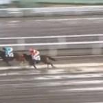 """<span class=""""title"""">木村牧場生産馬メイストーム、道営フレッシュチャレンジを快勝!</span>"""