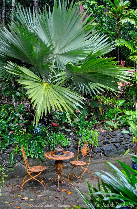 Mollie Bosworth's Kuranda garden