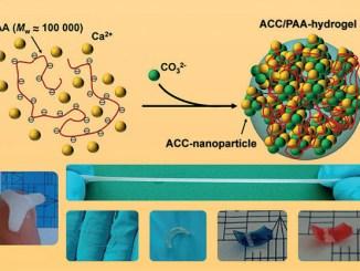 c8499 mineral hidrojel plastiklerin geri dc3b6nc3bcc59fc3bcmc3bc c4b0c3a7in yeni bir kapc4b1 ac3a7abilir