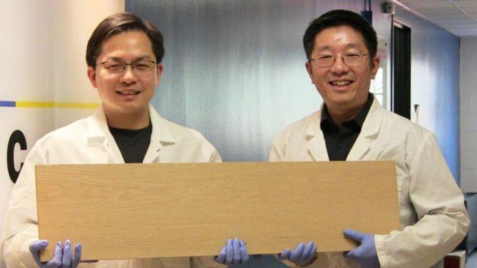 c5e4b odun enerji depolama malzemelerinde yeni bir kaynak olabilir