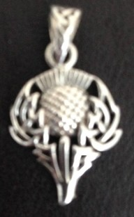 A close up of that thistle pendent