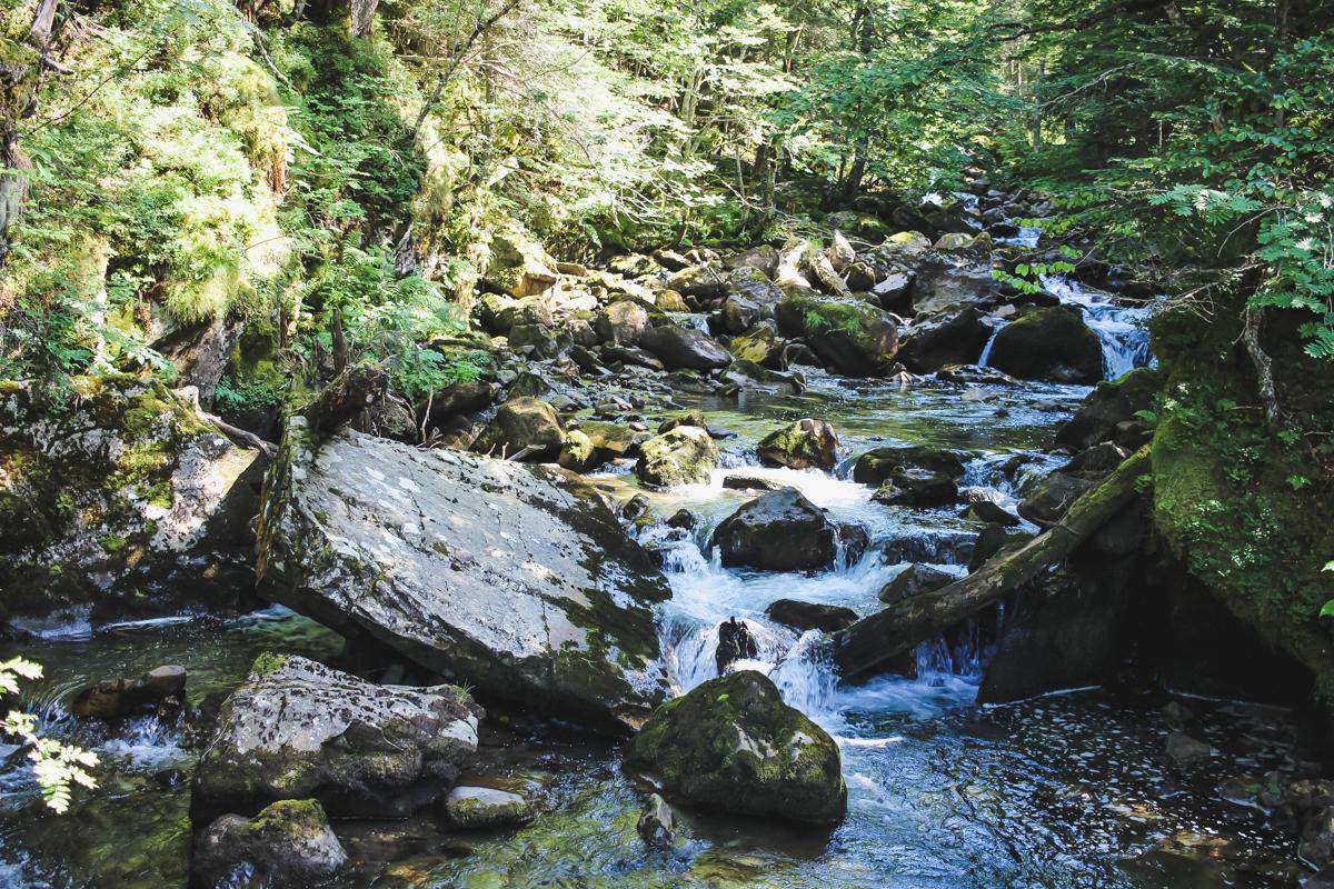 Ruisseau de la Randonnée des lacs d'Ayous dans les Pyrénées en Vallée d'Ossau