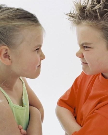 Как преодолеть соперничество между детьми - 8