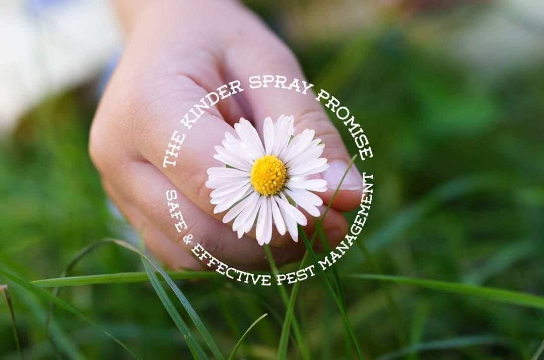 Kinder-Spray-provides-natural-pest-control-services