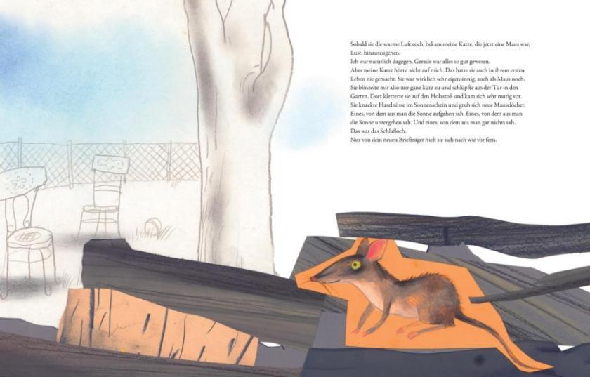Kinderbuch die 7 Leben meiner Katze von Saskia Hula und Aljoscha Blau