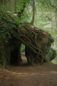 Höhle des Waldschrats