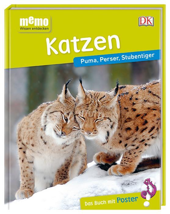 Sachbuch für Kinder über Katzen, Sachbuchreihe Memo Wissen entdecken, DK Verlag