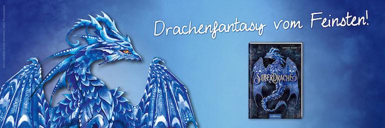 Silberdrache, Fantasy Buch für Jugendliche ab 11 Jahren