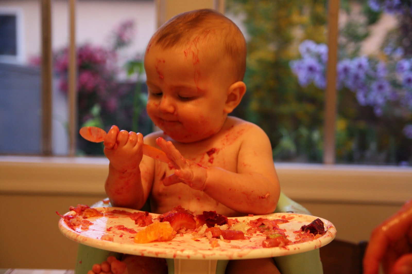 Image result for baby led weaning