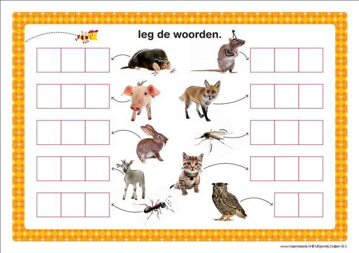 Preschool Werkbladen Afbeeldingen 9