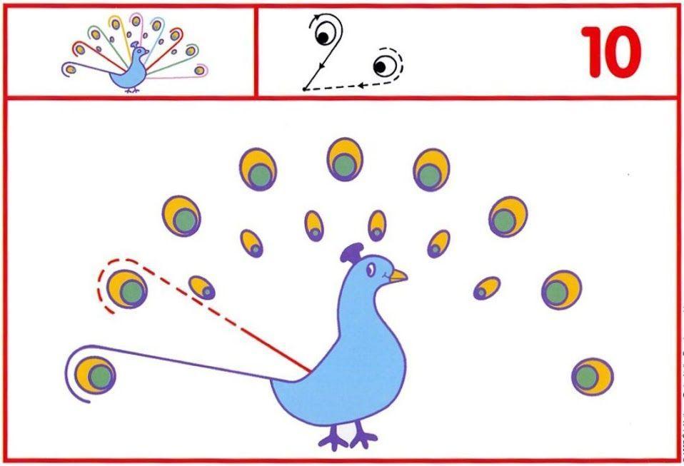 Voorschoolse Werkbladen Vogels 9