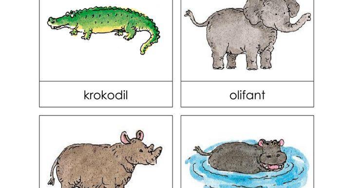 Voorschoolse Werkbladen Dierentuindieren 4