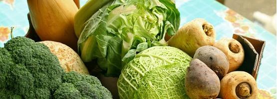 Voorschoolse Werkbladen Over Groenten En Fruit 9