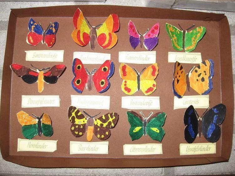 Voorschoolse Werkbladen Over Insecten 5