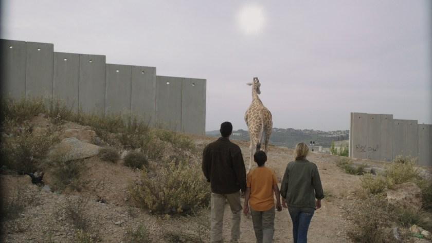 iaffz_giraffada_02