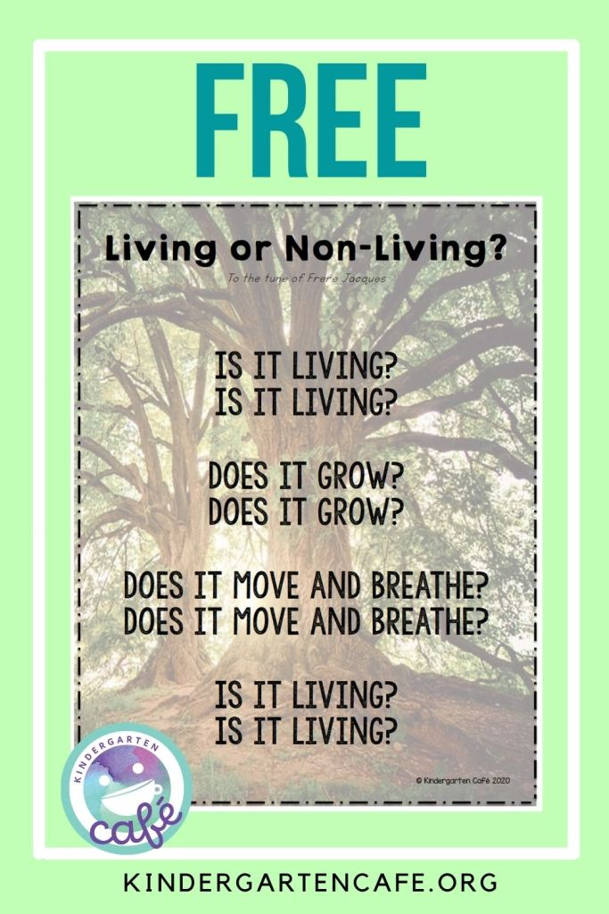 Teaching Living and Non Living Things Free