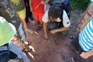 Bevor das Affenrennen bei der Schnitzeljagd losgeht, bekommen die Kinder noch die Spielregeln erklärt. Foto (c) kinderoutdoor.de