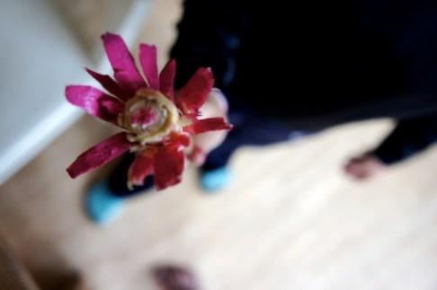 Mit Wasserfarben bekommen die Blumen ihre knalligen Töne. Foto (c) kinderoutdoor.de