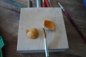 Basteln mit Muscheln geht flott weiter.Grundiert nun die beiden kleinen Muscheln.  foto (c) kinderoutdoor.de